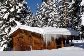 f074db39092 Ягода Ваканционно селище с вили в Боровец планински и ски курорт в ...